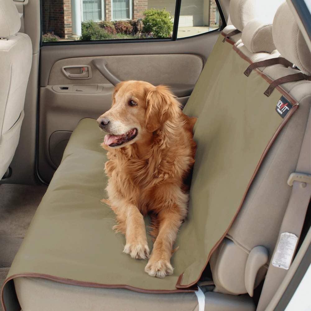 viajar perro carro toldo