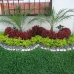 Crea un jardín pequeño en tu casa