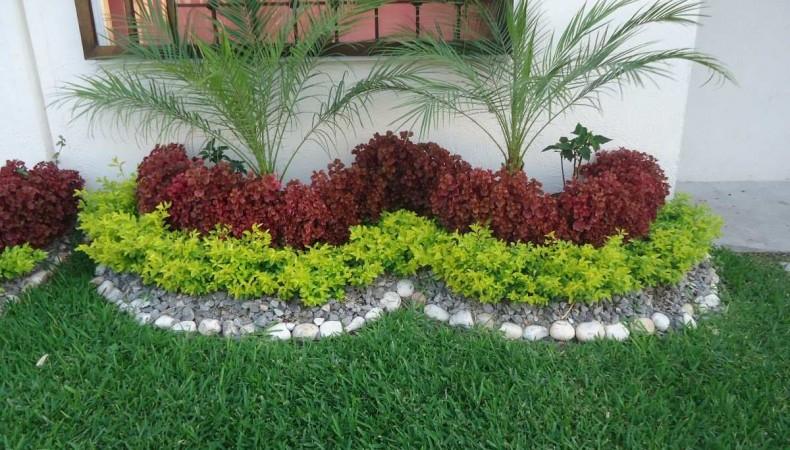 jardines pequenos